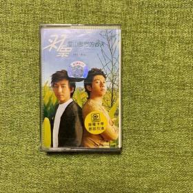 磁带:羽泉漫山遍野的春天