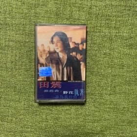 老磁带:田震
