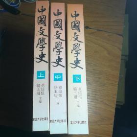 中国文学史(精装,全三册)