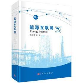 能源互联网 正版 孙宏斌 等 9787030620590 科学出版社