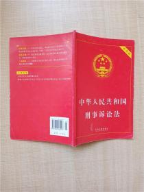 中华人民共和国刑事诉讼法 实用版【内有笔记】
