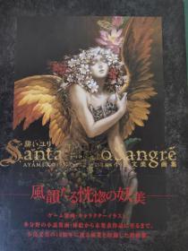 Santa Lilio Sangre绯いユリ―小岛文美画集