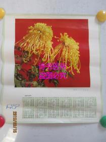 1982年年历画:黄花(河北人民出版社)