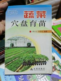 蔬菜穴盘育苗