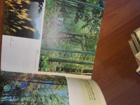 黄山 (12开 画册 )上海人民美术出版社(老图片)