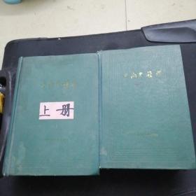 中药大辞典 (上下)