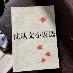 沈从文小说选 下册