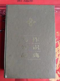 写作知识辞典