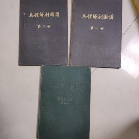 马体解剖图谱 一二三四五 册全套