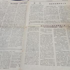 文革小报。工农兵战报(第14期)