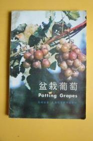 盆栽葡萄(上海科学技术出版社)