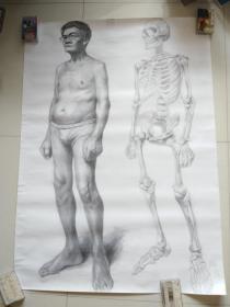 杨澄 手绘大幅素描人物 创作年代不详