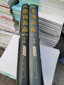 肥西县志(1986---2005)