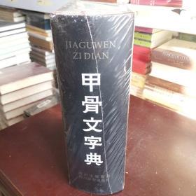 甲骨文字典(精)
