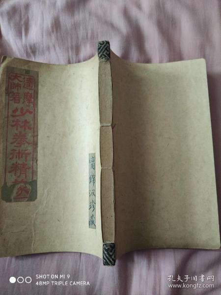 民国六年初版,服气图说《少林拳术精义》全一厚册