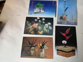 明信片;插花艺术..(一),10枚