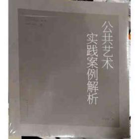 中国美术学院公共艺术研究丛书 第一辑 公共艺术实践案例解析 9787112178827 杨奇瑞 中国建筑工业出版社 蓝图建筑书店