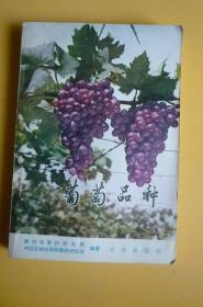 葡萄品种【农业出版社】