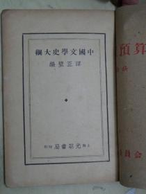 中国文学史大纲【改订八版】