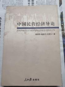 中国民营经济导论