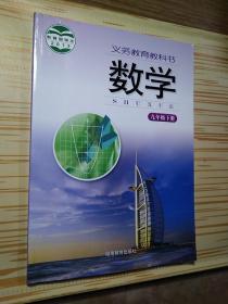 义务教育教科书 数学 九年级 下册 /严士健 湖南教育出版社