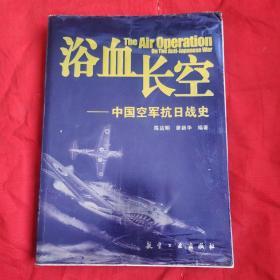 浴血长空:中国空军抗日战史