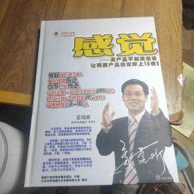 感觉(DVD6碟全)