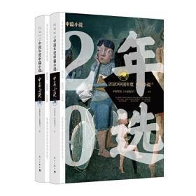 2020中国年度中篇小说(上下册)