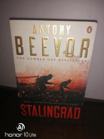 Stalingrad 保卫斯大林格勒 英文原版