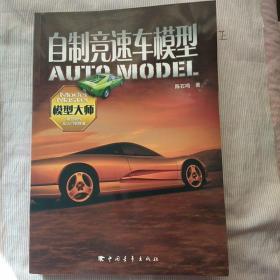 自制竞速车模型(品相如实描述)