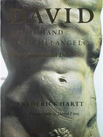 David, By the Hand of Michaelangelo