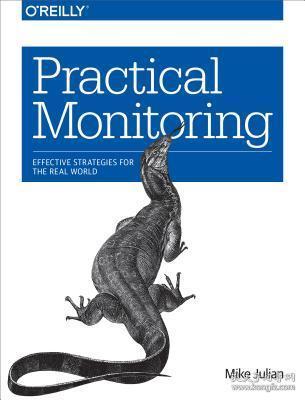 预订Practical Monitoring: Effective Strategies for the Real World