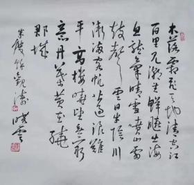 仿孙晓云  书法