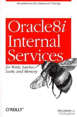 Oracle 8i Internal Services