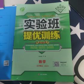 实验班提优训练:数学(九年级上 RMJY)人教版部分地区包邮