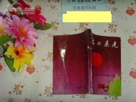 沽北晨光  北辰区党史资料汇编1949-1956》50817-48书脊有小裂痕