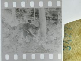 3427 年代老照片底片  长影拍戏