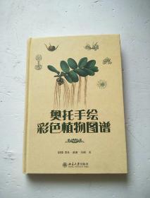 奥托手绘彩色植物图谱