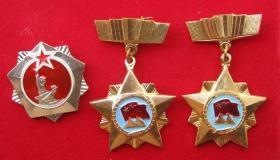 对越自卫反击战奖章三枚合售【保真】