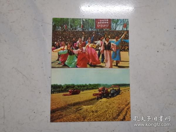 文革老明信片两张