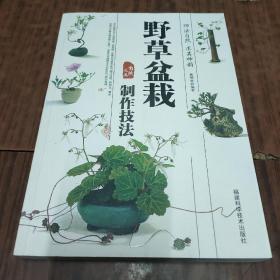 野趣盆栽制作技法(6-1)