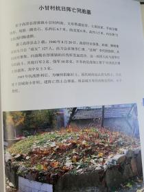 彩印:南京市高淳县淳溪镇小甘村抗日阵亡同胞墓、1940年、李仁勇、李代胜