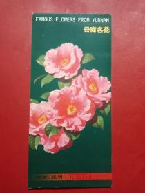 云南名花 (邮资明信片)
