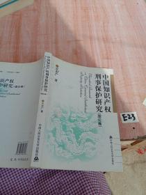 中国知识产权刑事保护研究(理论·实务)