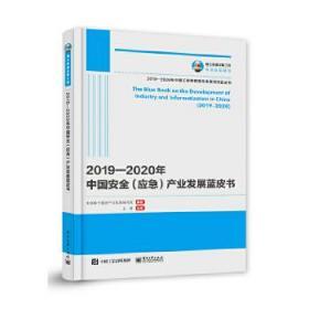 国之重器出版工程2019-2020年中国安全(应急)产业发展蓝皮书