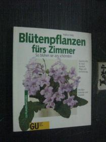德文版 BLÜTENPFLANZEN FÜRS ZIMMER 房间的花卉植物