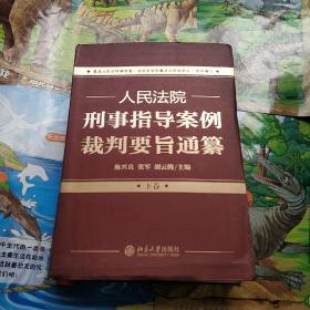 人民法院刑事指导案例裁判要旨通纂(下卷)
