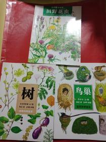 自然科学绘本 套装全3册:《鸟巢》 《树》 《田野花虫》