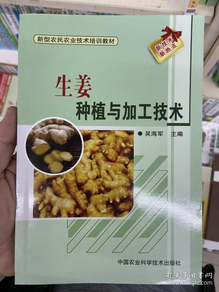 新型农民农业技术培训教材:生姜种植与加工技术