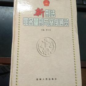 新刑法罪名量刑与案例通览(上中下)